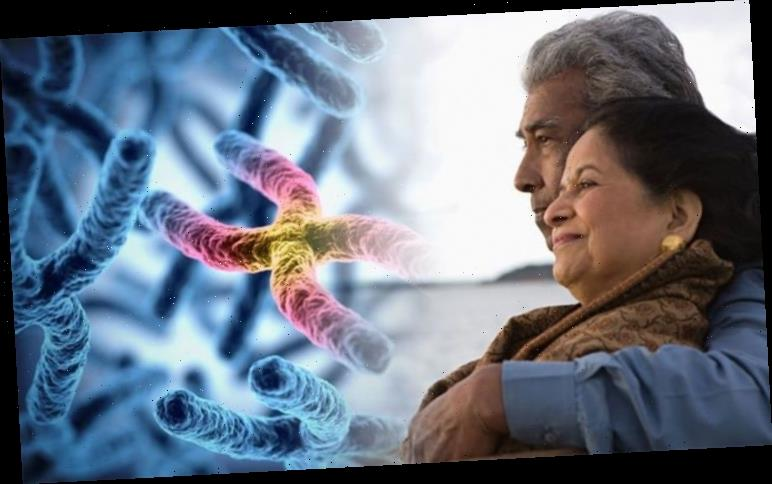 How to live longer: Scientists discover reason why women may live longer than men