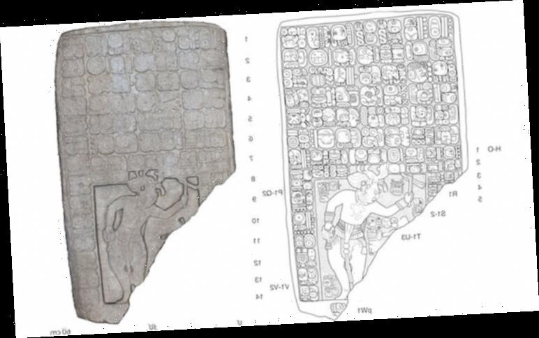 Archaeology breakthrough: Ancient Maya kingdom discovered in… a rancher's backyard