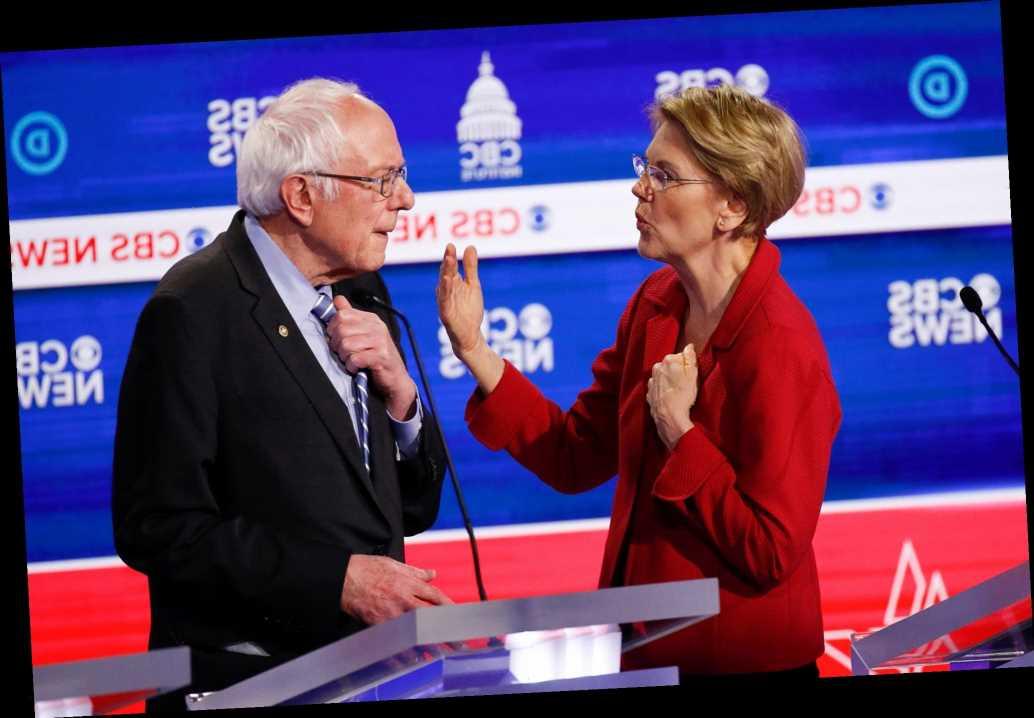 Elizabeth Warren blasts Bernie Bros for doing 'some really ugly stuff'