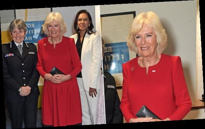 Camilla meets Gina Miller and Cressida Dick in rogue A-line dress