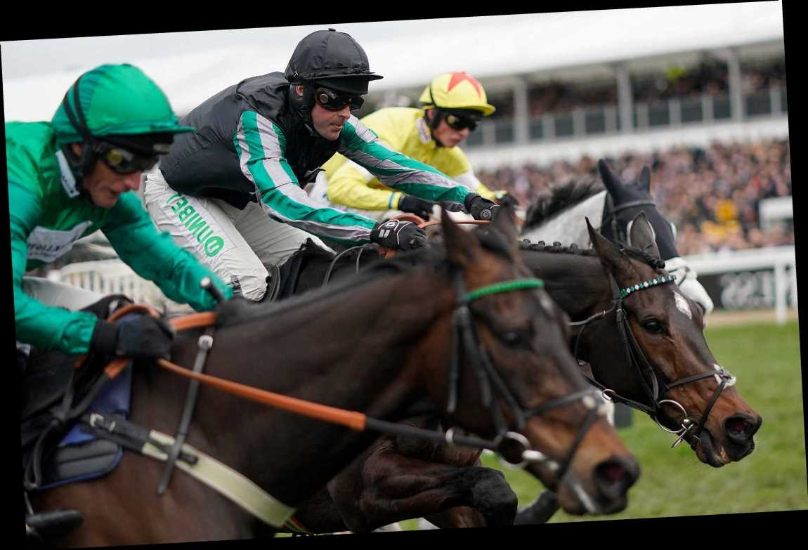 Cheltenham Festival: Over £800 in Free Bets and Sign Up Bonuses – The Sun