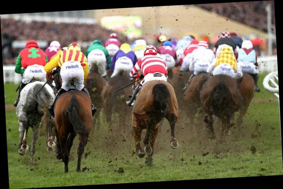 Cheltenham Festival tips: Who should I bet on in 4.50 at Cheltenham on Tuesday?