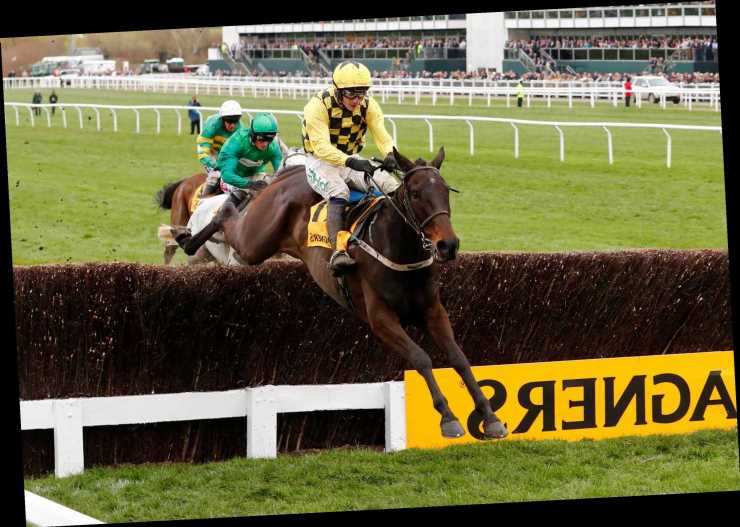 Cheltenham Festival tips: Gold Cup trends – we help you find the winner of the race live on ITV at 3.30pm today