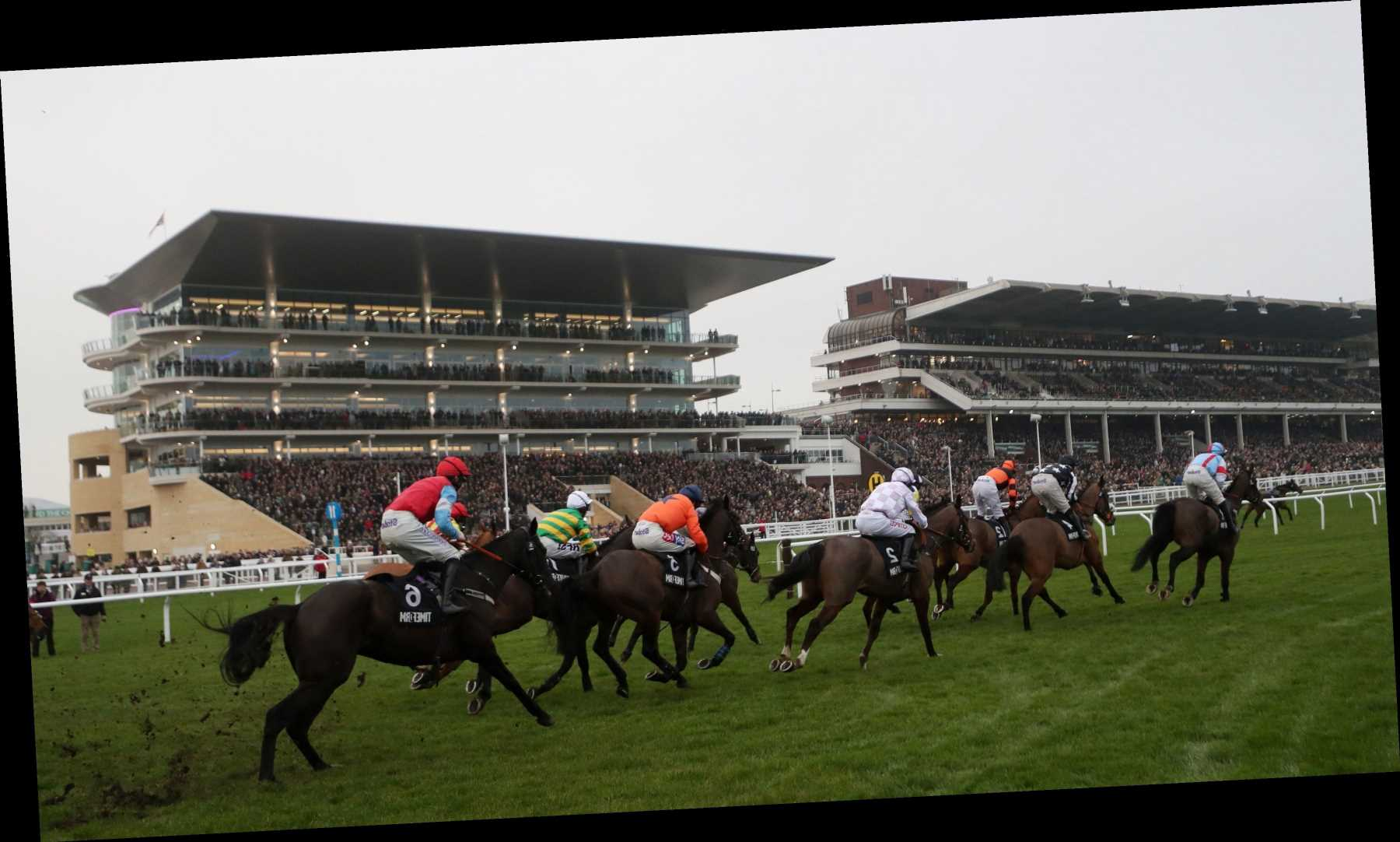 Cheltenham 2.50 racecard: Runners and riders for today's Coral Cup live on ITV