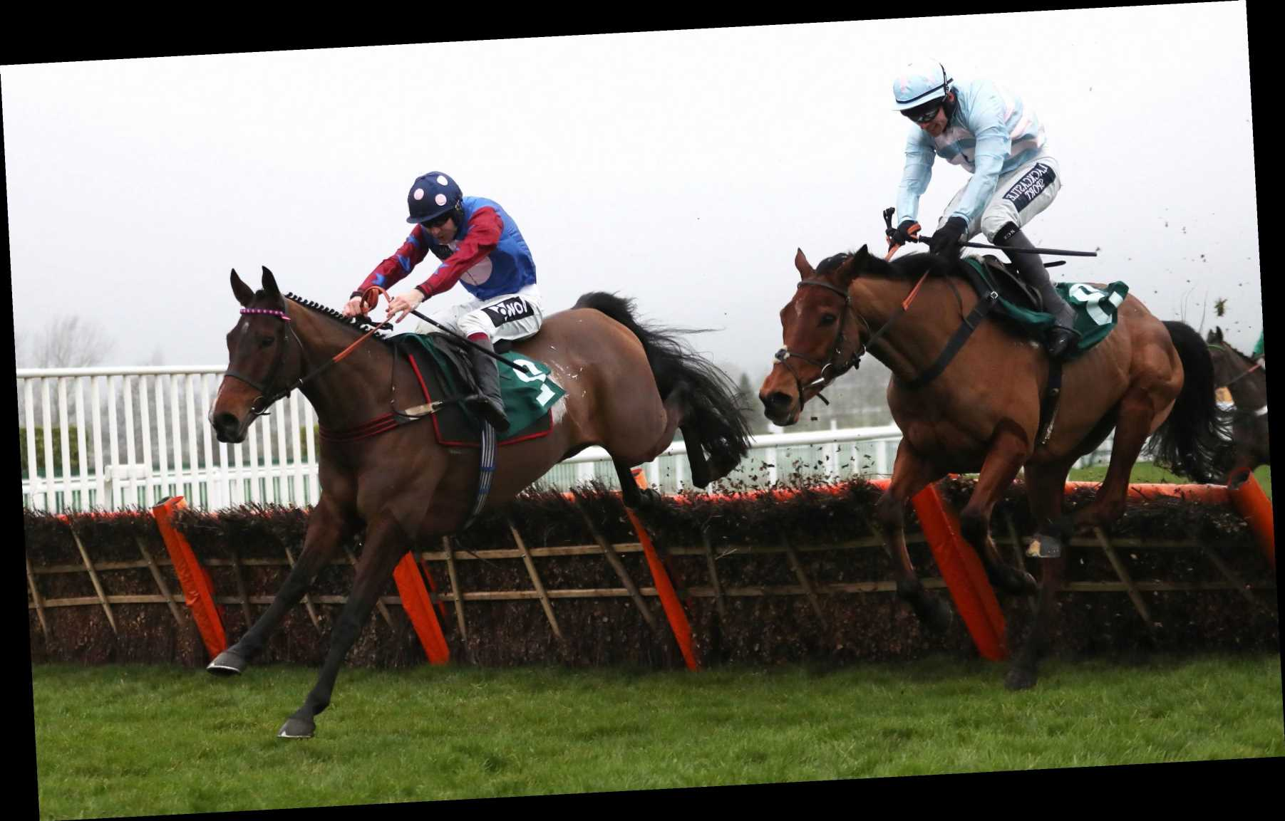Racing tips: All you need for the Paddy Power Stayers' Hurdle at Cheltenham today