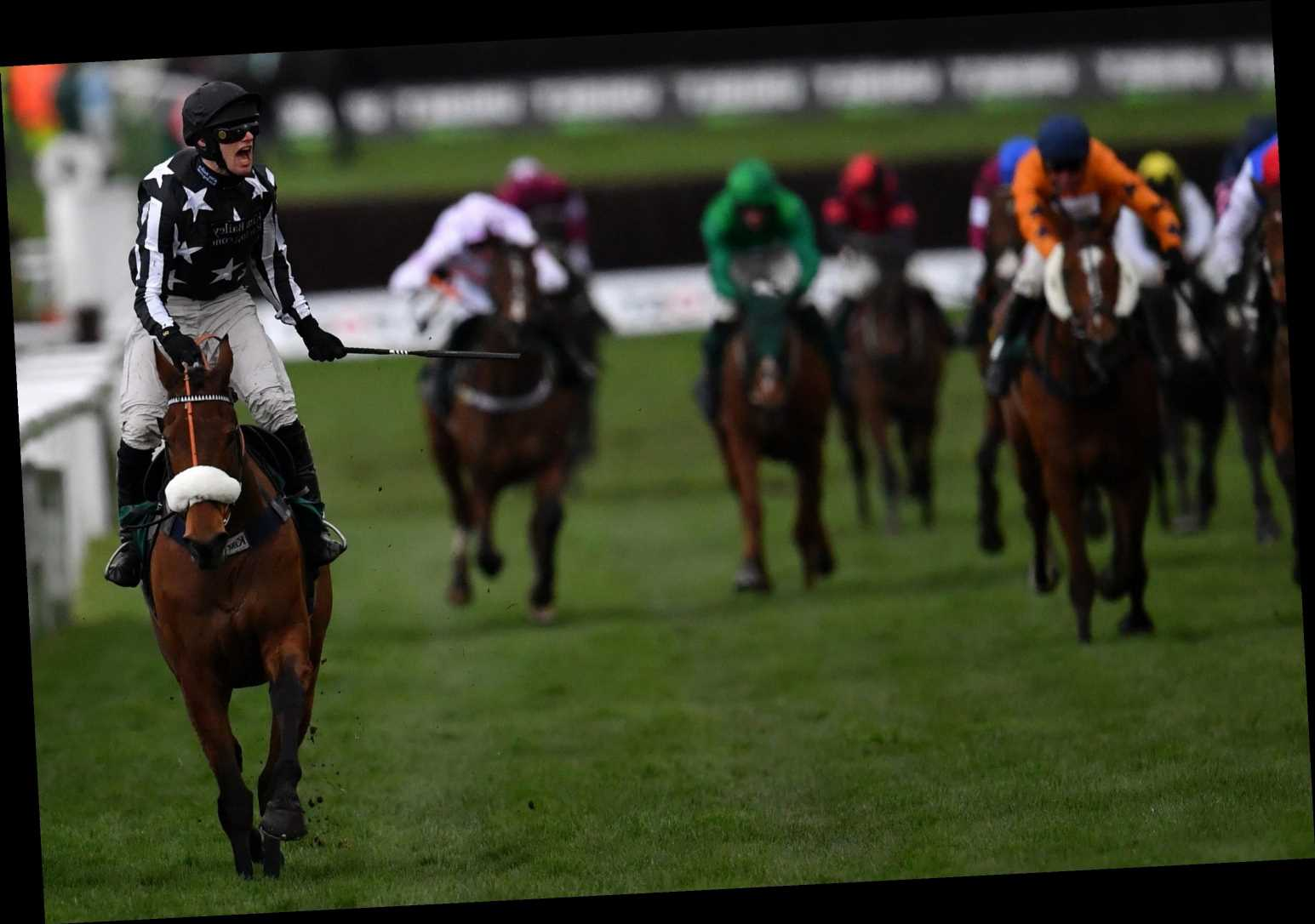 Kim Bailey's handicap good thing Imperial Aura gives punters the thumbs up in Northern Trust Novices'
