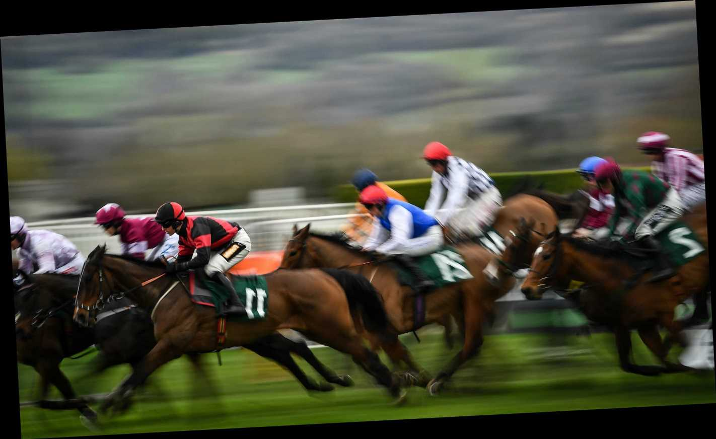 Cheltenham 2.10 racecard: Runners and riders for today's Pertemps Final live on ITV