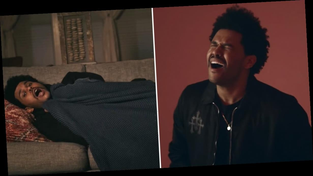 The Weeknd's SNL Serenade Is So Smooth, You Almost Forget It's About Sleeping on the Couch