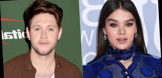 Hailee Steinfeld Has an Awkward Moment When a Niall Horan Song Plays During Her Live Stream