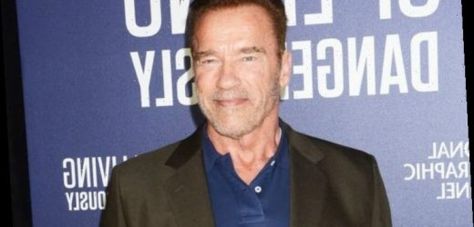 Arnold Schwarzenegger Calls Edward Norton Wimpy Over His Workout Routine