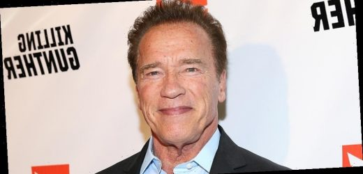 Arnold Schwarzenegger Thinks Those Not Wearing Masks Are 'Morons'