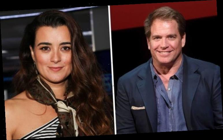 NCIS: Did Cote de Pablo and Michael Weatherly ever date in