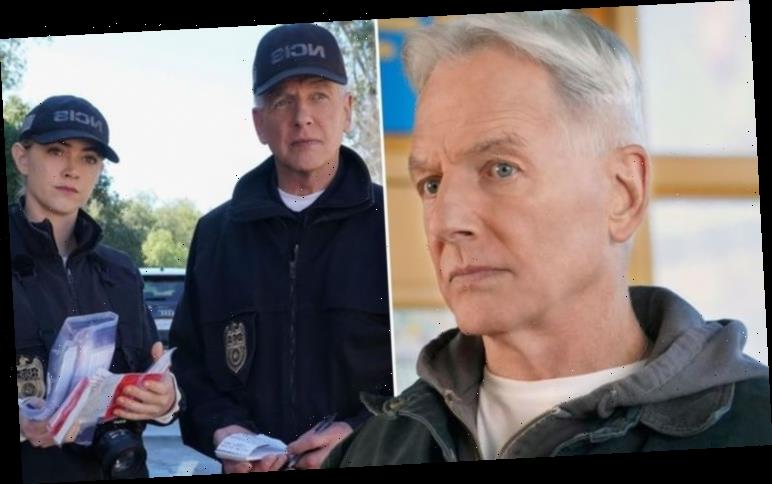 NCIS season 18 spoilers: Truth behind mystery Gibbs' disappearance to be exposed