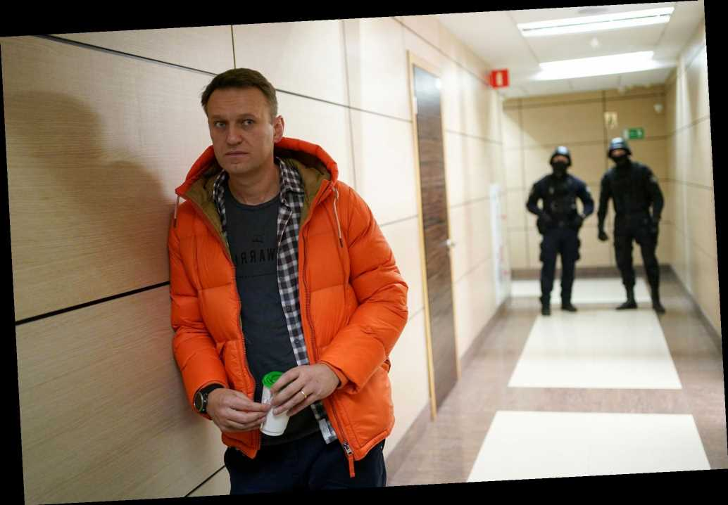 Russian opposition leader Alexei Navalny may have had ...