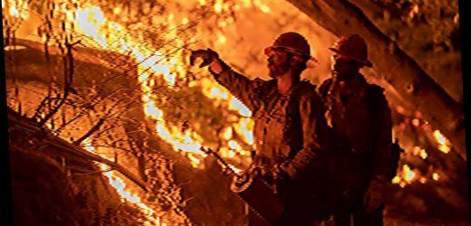 Sorry, solar panels won't stop California's fires