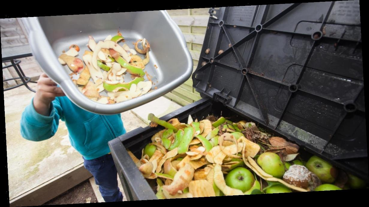 How to reduce food waste during the coronavirus pandemic