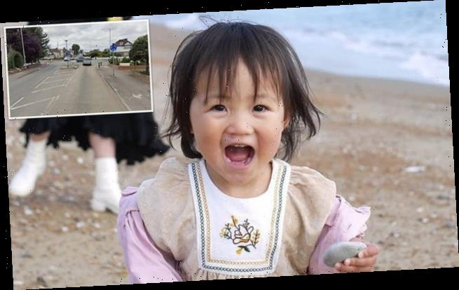 Toddler who was killed by 'drugged driver' while out in her pushchair