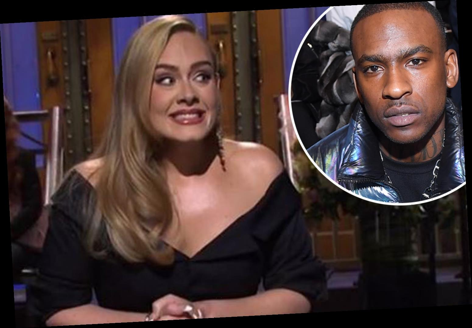 Adele calls herself a 'single cat lady' after Skepta romance rumours
