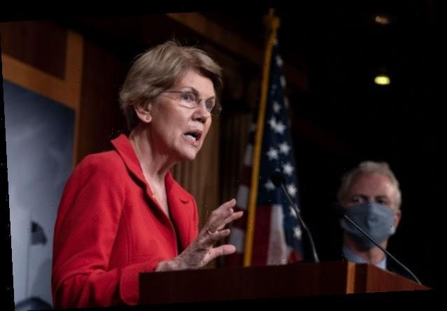 Elizabeth Warren Proclaims Trump 'Got Spanked' in Debate