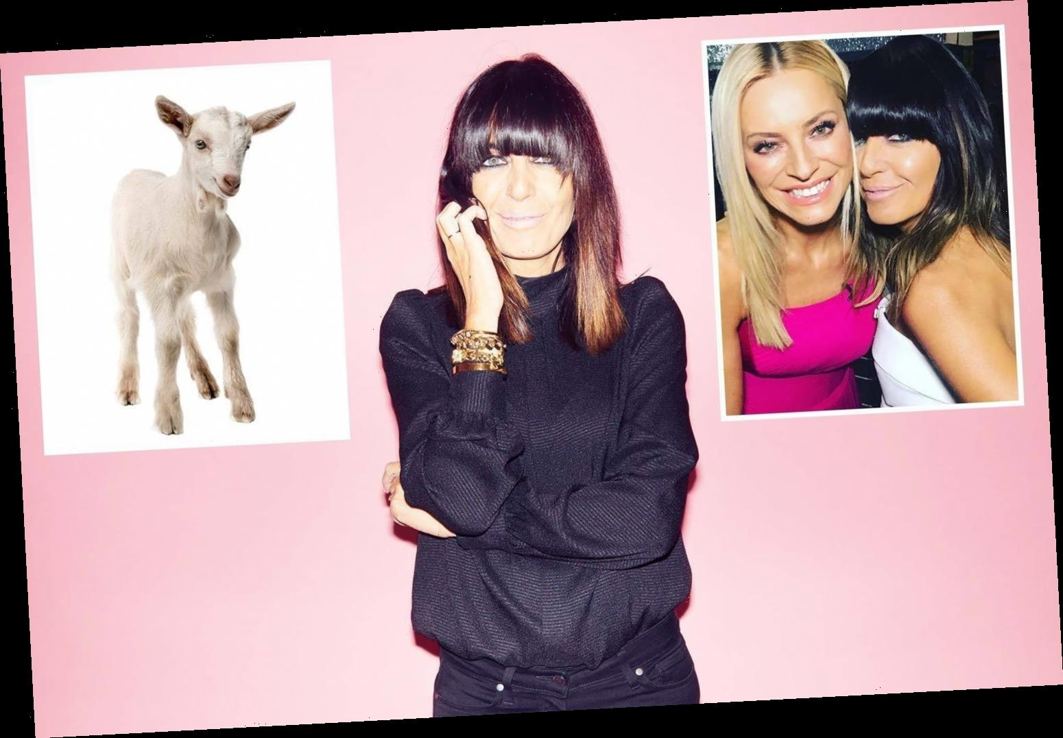 From baby goats to newspapers, the little things that bring me big happiness, says Claudia Winkleman