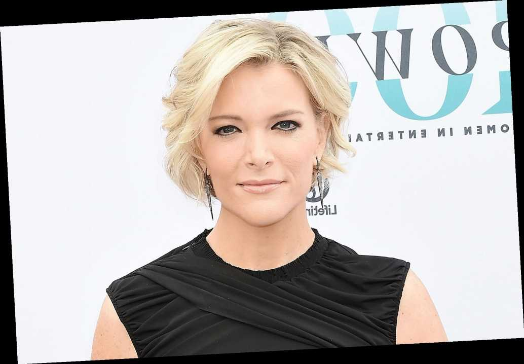 Megyn Kelly Feels 'Strongly' That 'Schools Need to Be Back Opened': 'Healthy for the Children'