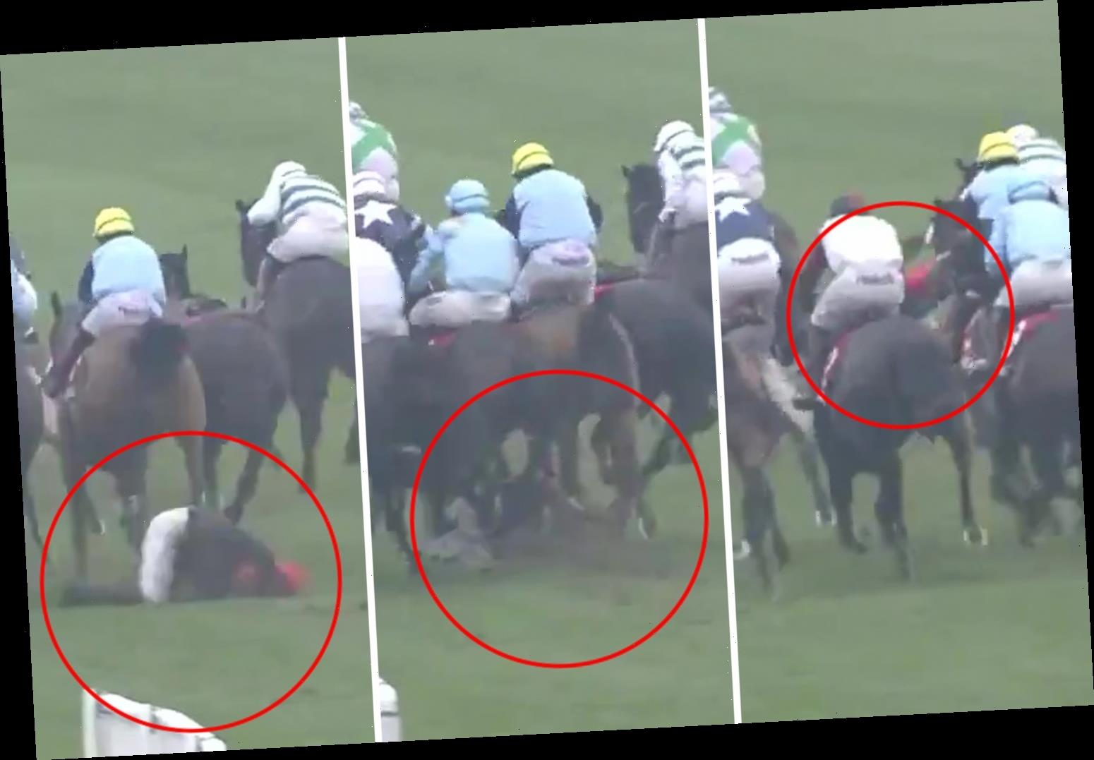Watch jockey Harry Cobden suffer horror fall UNDERNEATH charging horses in nasty incident at Newbury racecourse