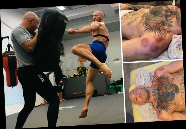Inside Conor McGregor's training camp for UFC return as he undergoes ancient cupping therapy to speed up recovery