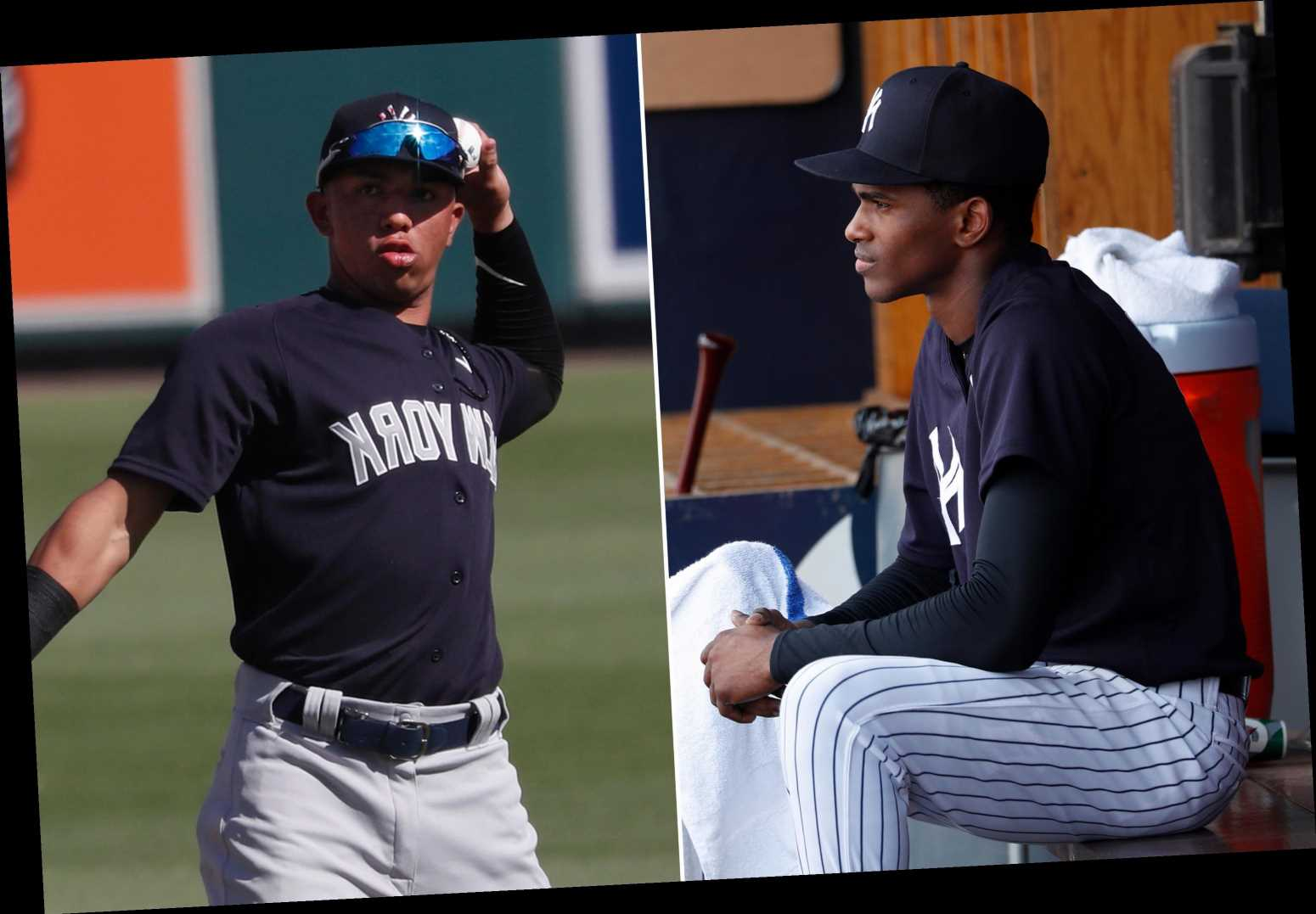 Yankees facing hard decisions as 40-man roster deadline looms
