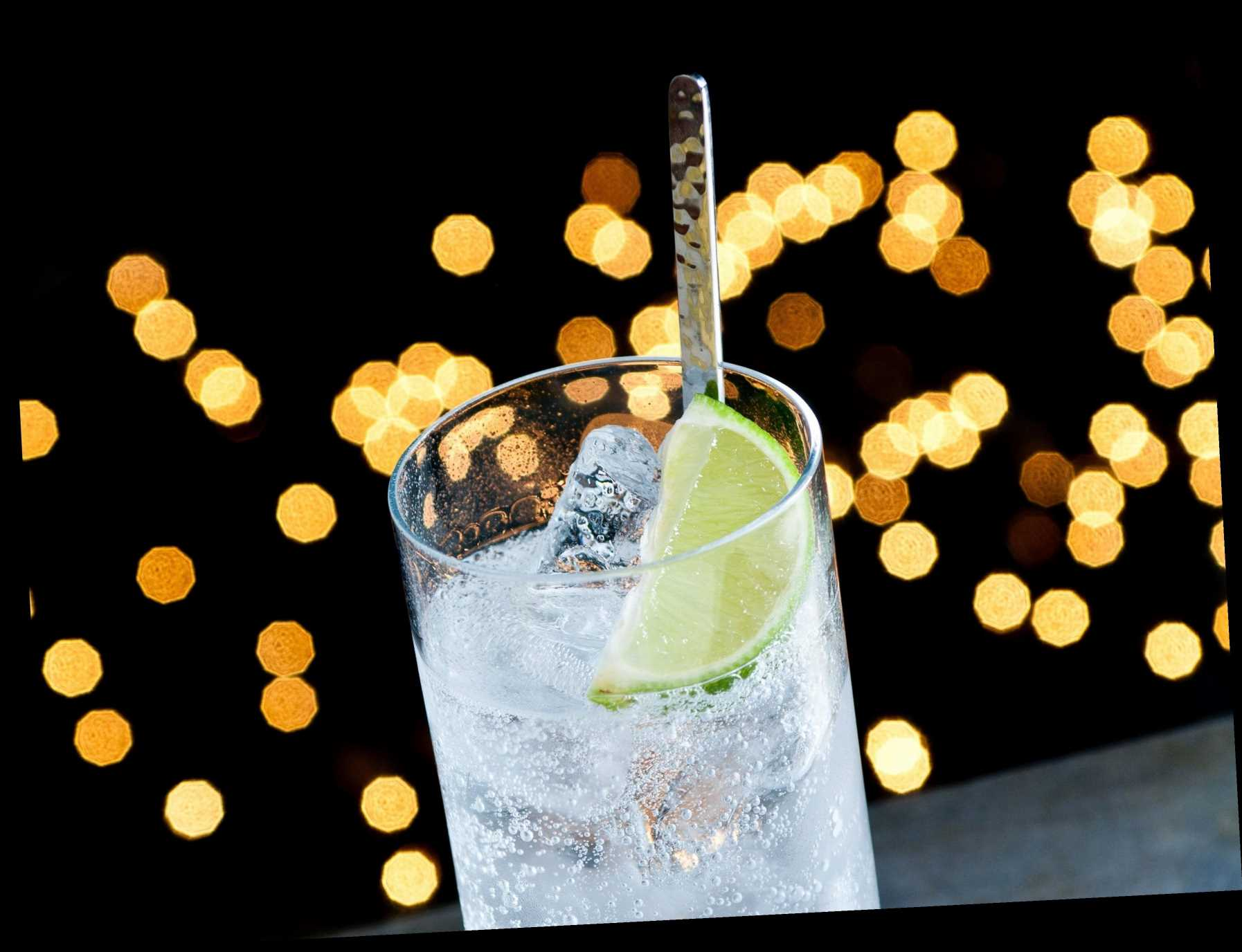 7 Best Gin Advent Calendars 2020   The Sun UK