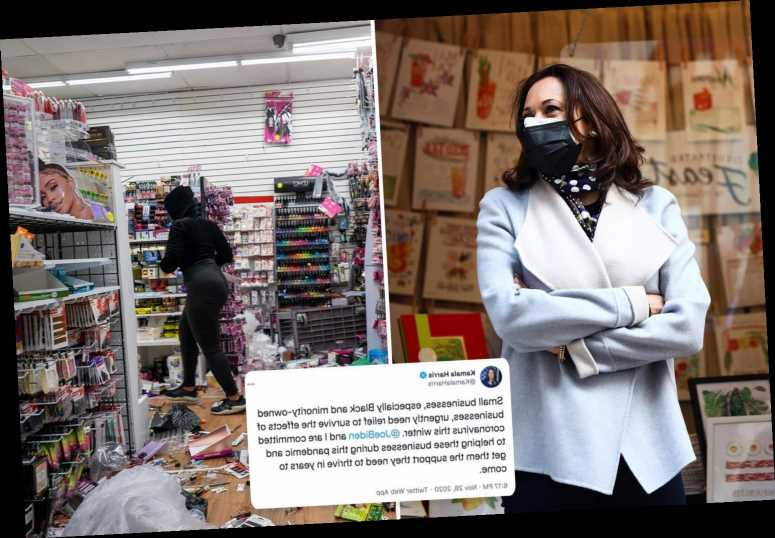 Kamala Harris slammed for tweet backing small businesses despite her call to bail out rioters who looted stores