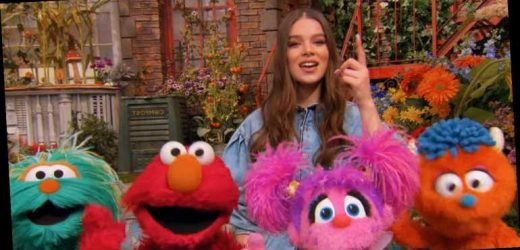 Hailee Steinfeld Has a New Song With The Cast of 'Sesame Street'