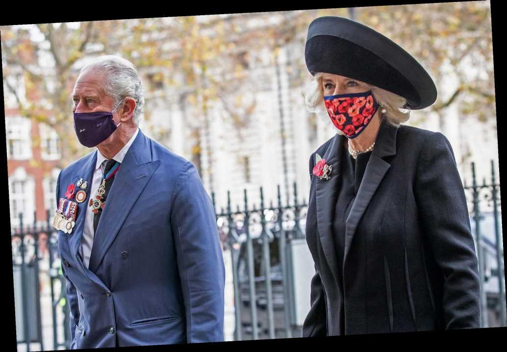 Camilla, Duchess of Cornwall Surprises in Poppy Face Mask for Special Armistice Day Event
