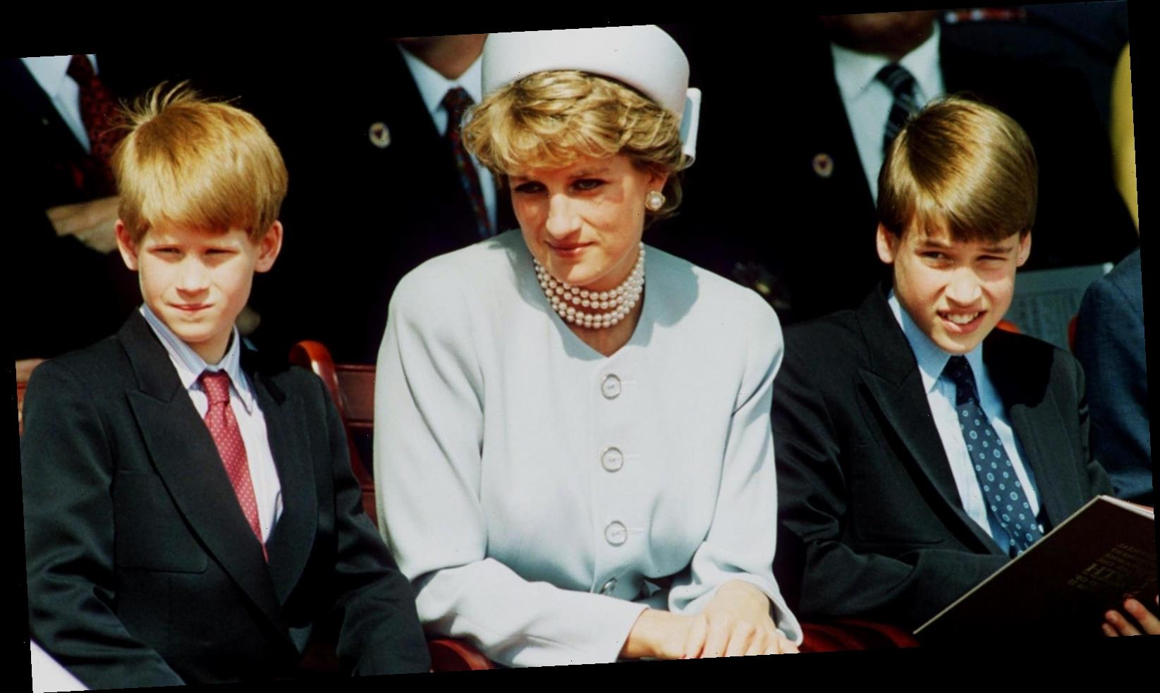 Prince William Has Some Thoughts About The Princess Diana Investigation