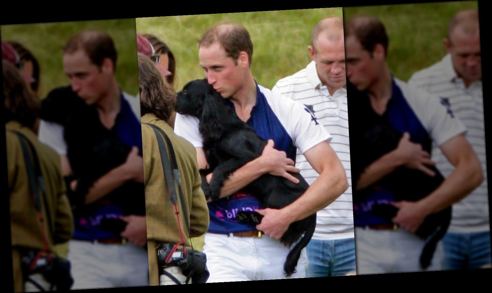 William And Kate Share The Heartbreaking Death Of Their Dog Lupo