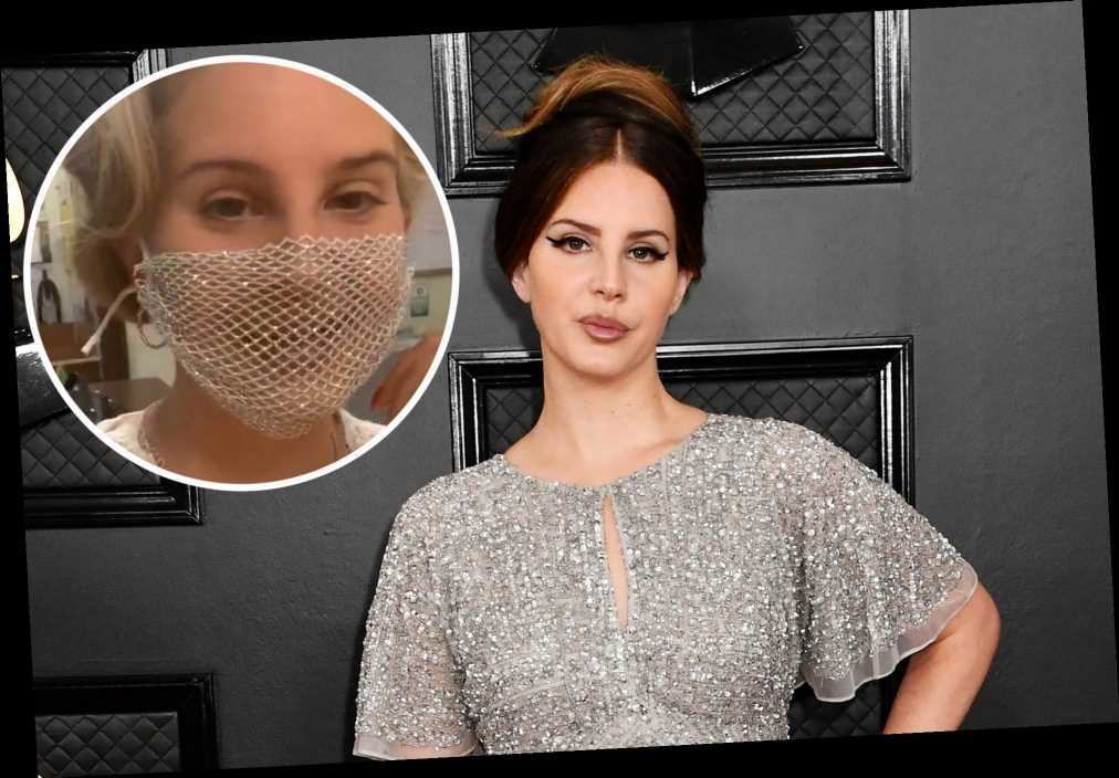 Lana Del Rey finally responds to mesh face mask controversy