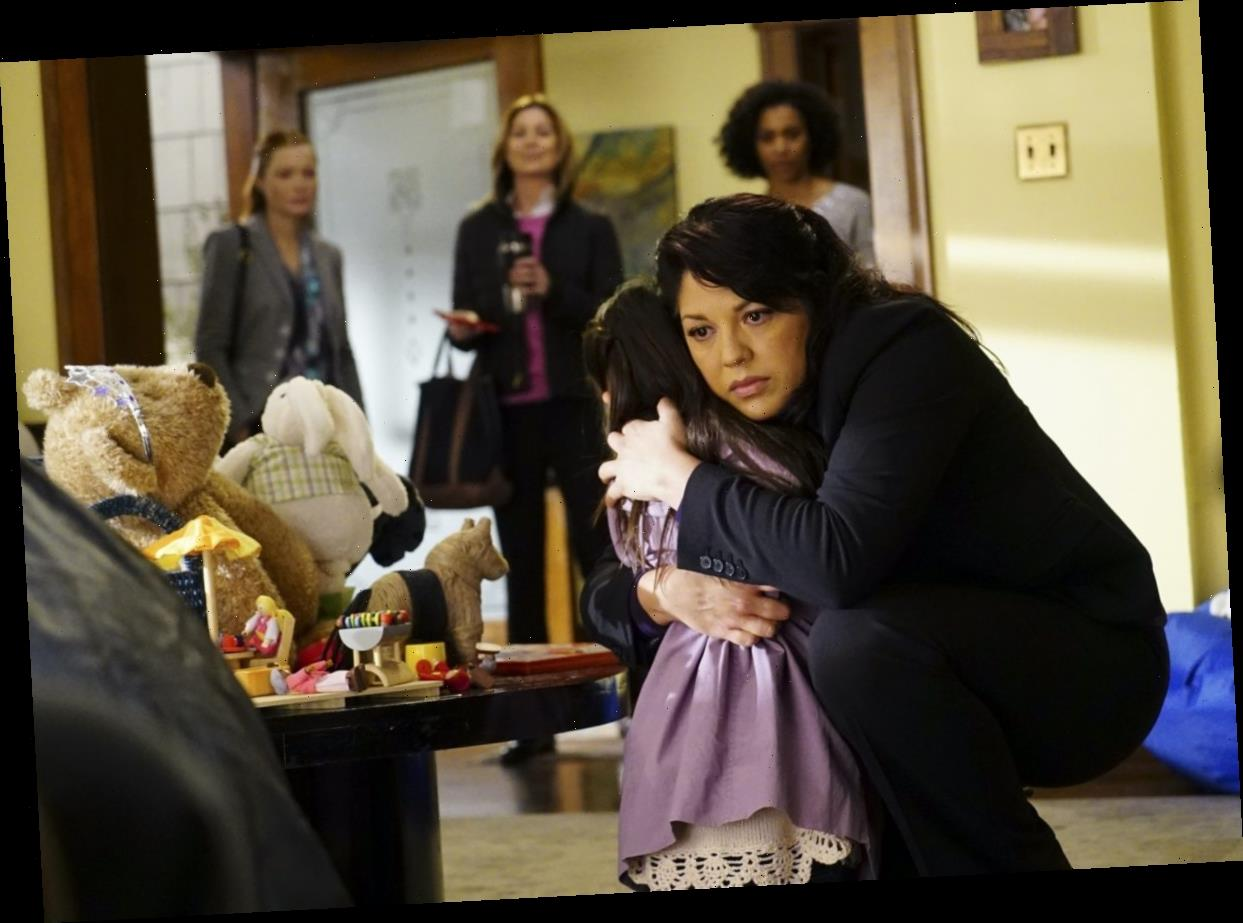 'Grey's Anatomy' Fans Had 'No Sympathy' For Callie During Her Custody Battle for Sophia