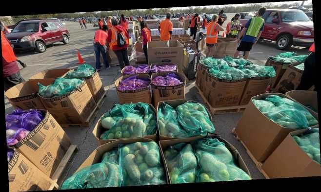 Texas food bank comes to the aid of tens of thousands ahead of Thanksgiving
