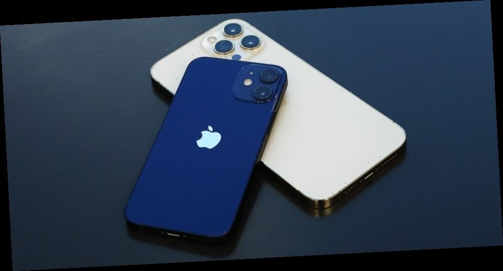 Take a Closer Look at the Apple iPhone 12 Pro Max and iPhone Mini