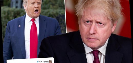 Trump rips Boris and says 'we don't want lockdowns' after Brit PM cancels Christmas in London with harshest rules