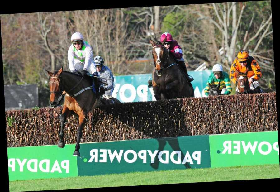 Chacun Pour Soi's odds slashed for Champion Chase at Cheltenham in March after runaway win at Leopardstown