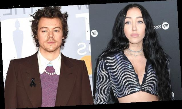 Noah Cyrus Apologizes For Using Racially Insensitive Comment While Defending Harry Styles: 'I Am Mortified'