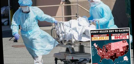 One American dying of Covid every 30 seconds as US hits highest EVER daily death toll since start of pandemic