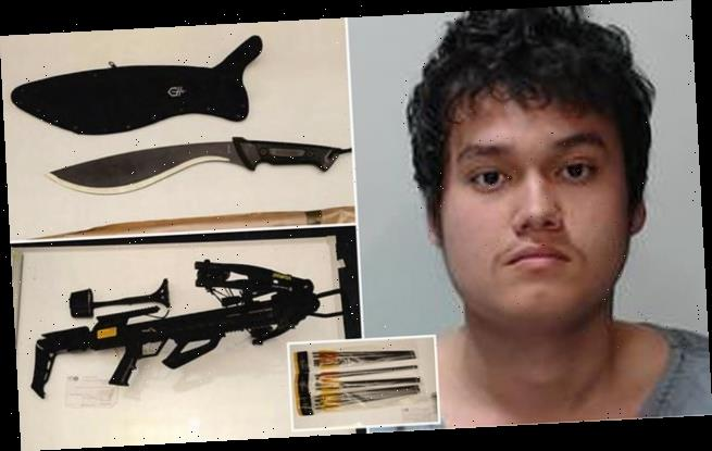 Internet obsessive, 22, guilty under Terror Act is jailed for 10 years
