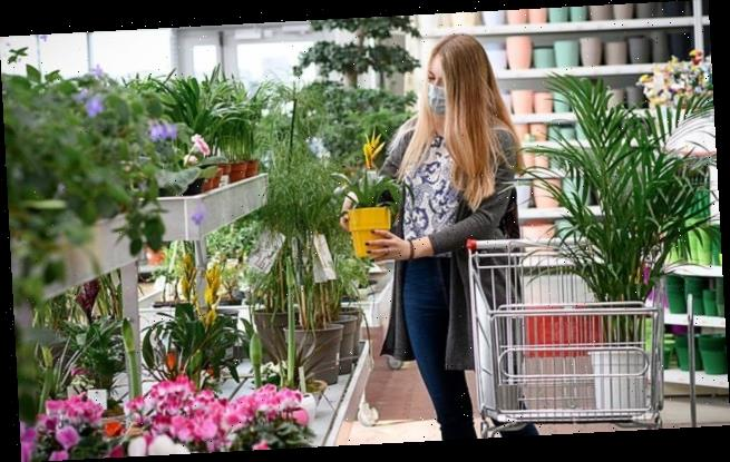 Mother is BLASTED for wanting to go to a garden centre
