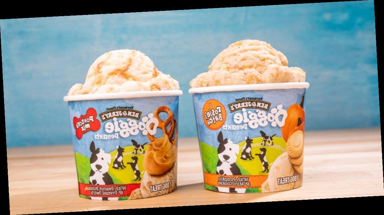 Ben & Jerry's New Doggie Desserts Ice Cream Line Includes 2 Different Treats For Your Pup