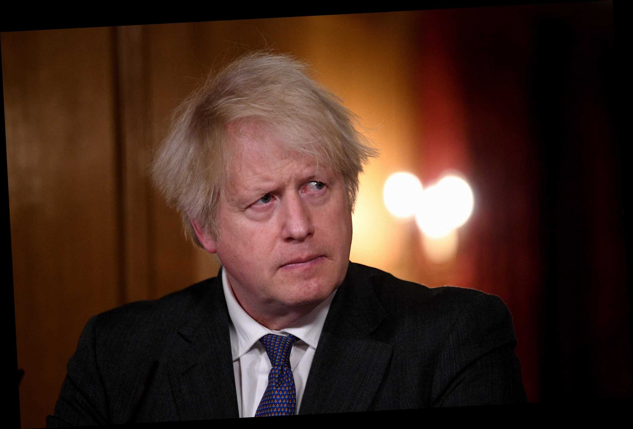 Top scientists say 'not clear' mutant Covid strain is more deadly after SAGE warning handed to Boris 'only 50% certain'