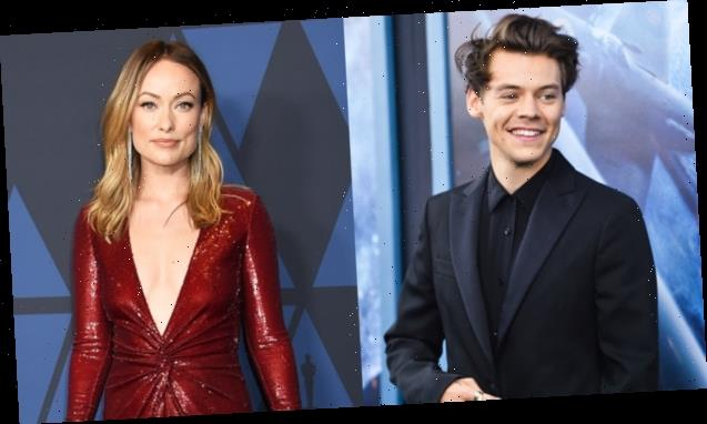 Harry Styles, 26, 'Not Bothered' By 10-Year Age Gap With Olivia Wilde, 36: 'She's A Dream Girl'