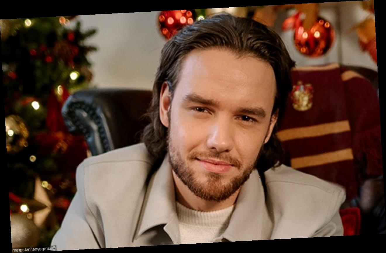 Liam Payne Laments Over Struggle in Spending Time With Son Amid COVID-19 Pandemic