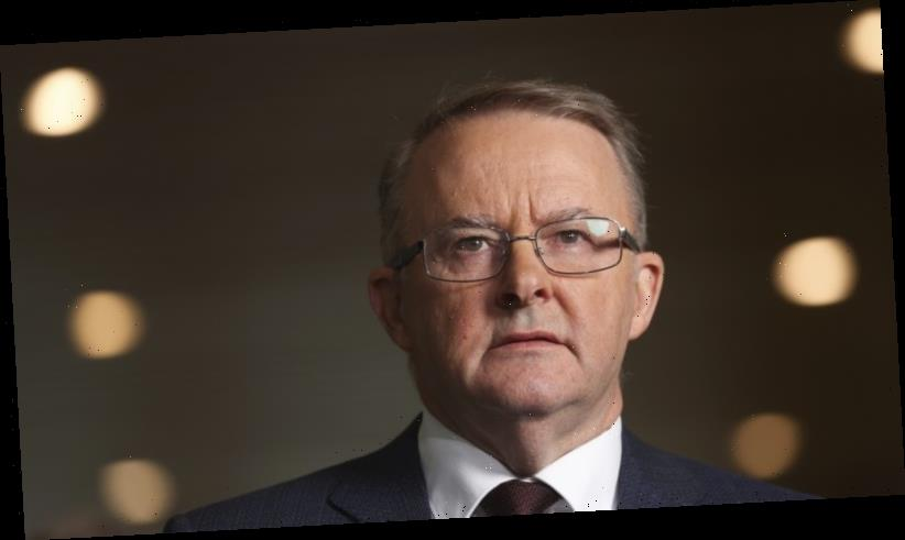 Albanese says Morrison must make call on cabinet minister accused of rape