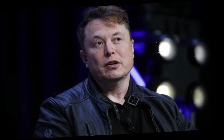 Elon Musk plans supercar which HOVERS 'six feet' above the ground – 'You're not gonna die'